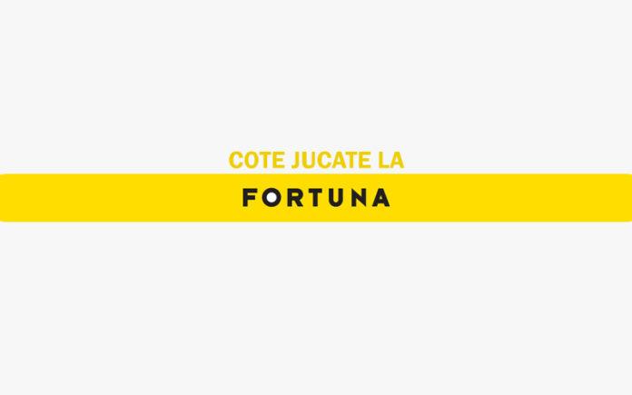Articol Fortuna